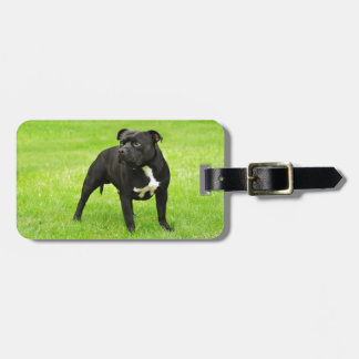 Black Amstaff Luggage Tag