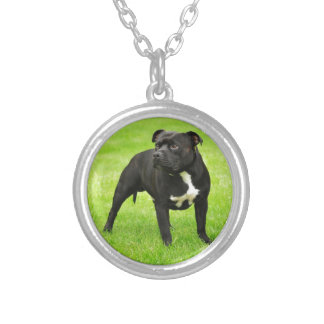 Black Amstaff Silver Plated Necklace