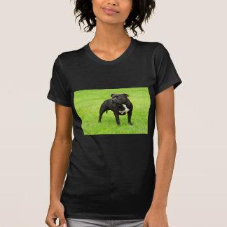 Black Amstaff T Shirt