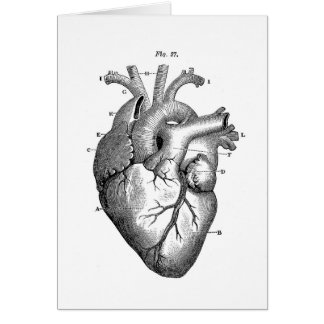 Black Anatomical Heart Greeting Cards