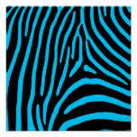 Black and Aqua Zebra Stripes