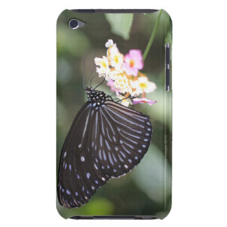 Black and blue butterfly on flower iPod Case-Mate case