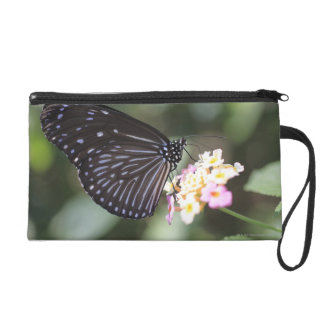 Black and blue butterfly on flower wristlet