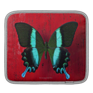 Black and blue butterfly on red wall iPad sleeve