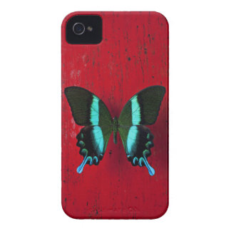 Black and blue butterfly on red wall iPhone 4 case