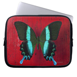 Black and blue butterfly on red wall laptop sleeve