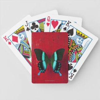 Black and blue butterfly on red wall poker deck