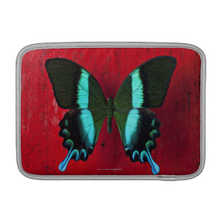 Black and blue butterfly on red wall sleeves for MacBook air
