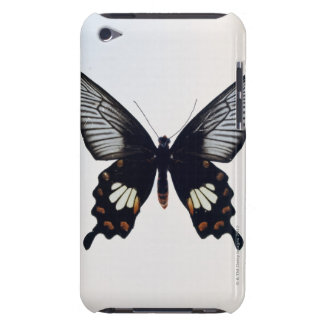 Black and brown butterfly iPod touch covers