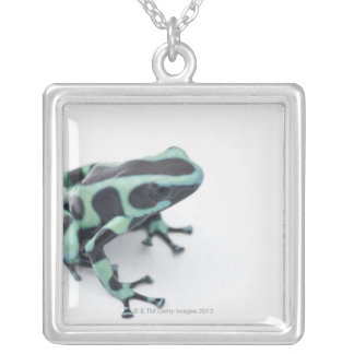 black and green poison dart frog (dendrobates silver plated necklace