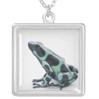 Black and Green Poison Dart Frog Silver Plated Necklace