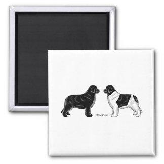 Black and Landseer Newfoundland Dogs Magnet