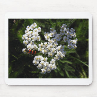 Black and Red Bug on White Flower Mouse Mat