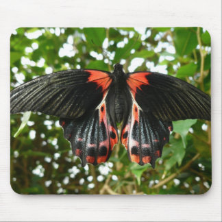Black and Red Butterfly Mouse Mat