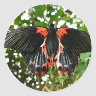 Black and red moth classic round sticker
