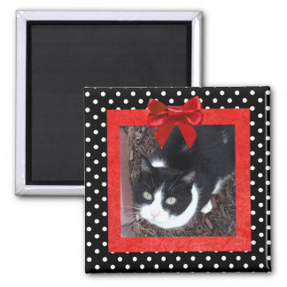 Black and Red Polka Dotted Photo Magnet