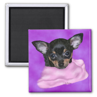 Black and Tan Chihuahua Puppy Magnet