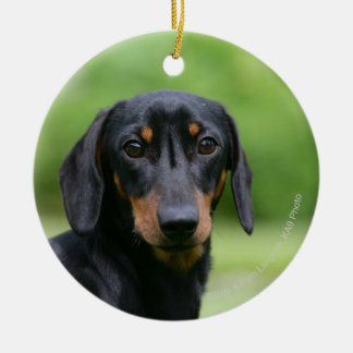 Black and Tan Miniture Dachshund 1 Christmas Ornament