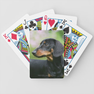 Black and Tan Miniture Dachshund 2 Bicycle Playing Cards