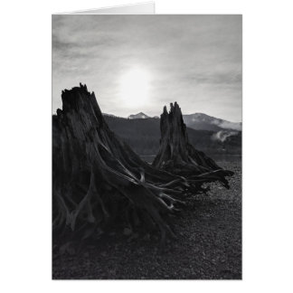 Black and White #1 Blank Greeting Card