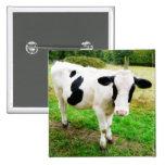 Black and White Apostrophe S Cow 15 Cm Square Badge