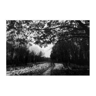 Black and white autumn acrylic print