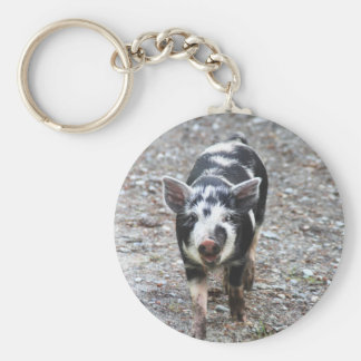 Black and White Baby Pig Key Chains