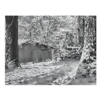 Black and White Backlit Rural Snow Scene Postcard