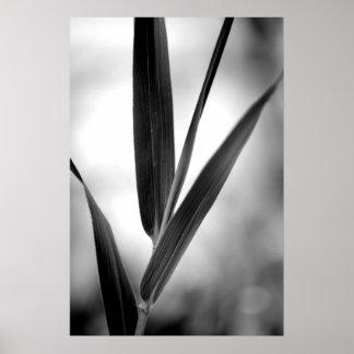 Black and white bamboo foliage print