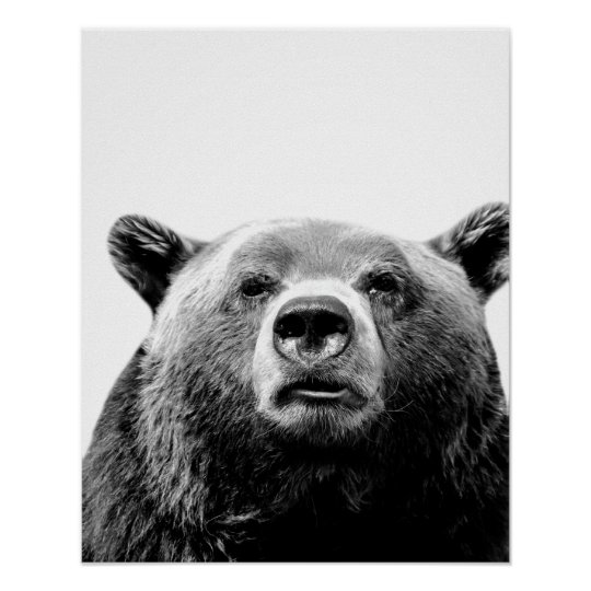 Black and white bear woodland animal photo nursery