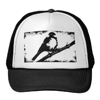 Black and White Bird Image Cap