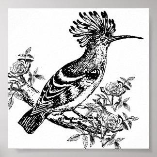 Black And White Bird Poster