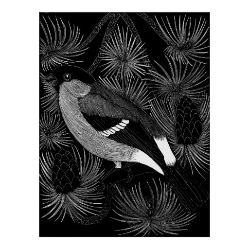 Black and White Bird Posters