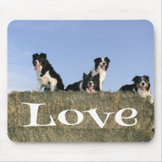 Black And White Border Collie Puppy Dog Mousepad