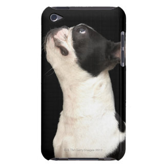 Black and white Boston Terrier looking up Barely There iPod Cover