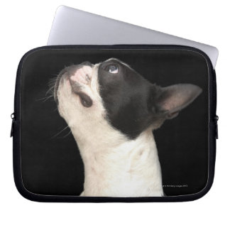 Black and white Boston Terrier looking up Laptop Computer Sleeves