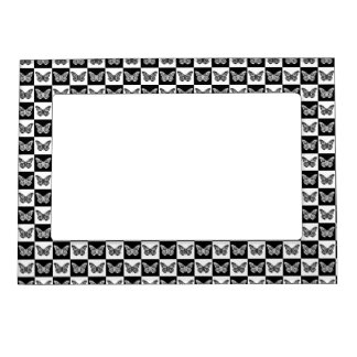 Black and white butterfiles frame