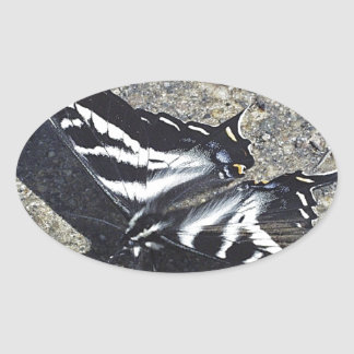 Black and White Butterfly on Concrete Oval Sticker