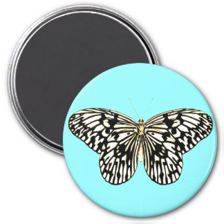 Black and white butterfly, turquoise background magnets