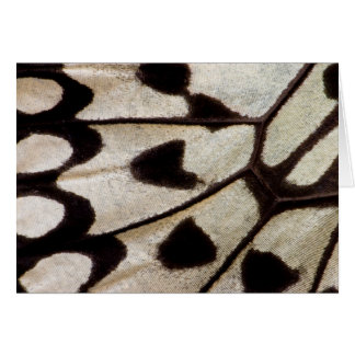 Black and white butterfly wing card