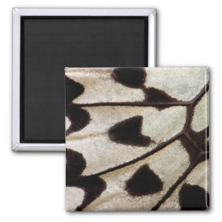 Black and white butterfly wing square magnet