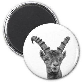 Black and white capricorn animal photo 6 cm round magnet