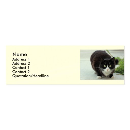 Black and white cat business card templates