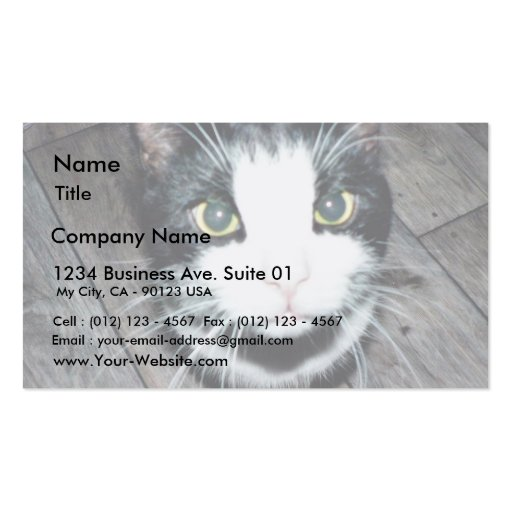 Black And White Cat Business Card Template