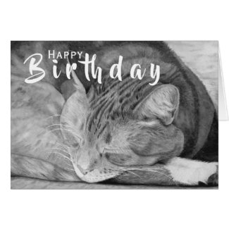 Black and White Cat | Cat Lover Folded Card