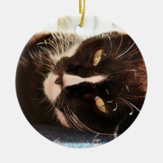 black and white cat face animal photo yellow eyes christmas ornaments