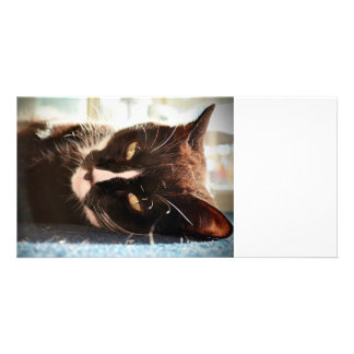 black and white cat face animal photo yellow eyes personalized photo card