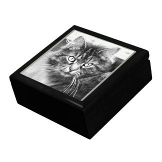 Black and White Cat Gift Box