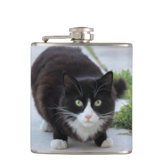 Black and white cat hip flask