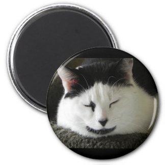 Black and White Cat Humor 6 Cm Round Magnet